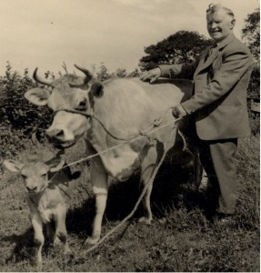 Rickard 'Dick' Ayres with his prize cow