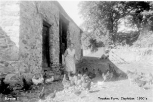 Picture of Effie White at Troakes Farm c. 1950