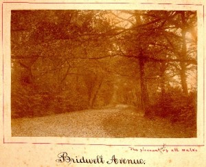 Picture of Bridwell Avenue, Halberton, Devon
