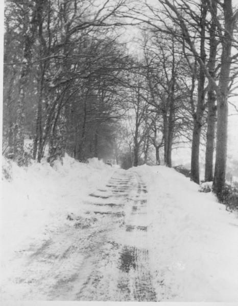 1963_snowfall (11)