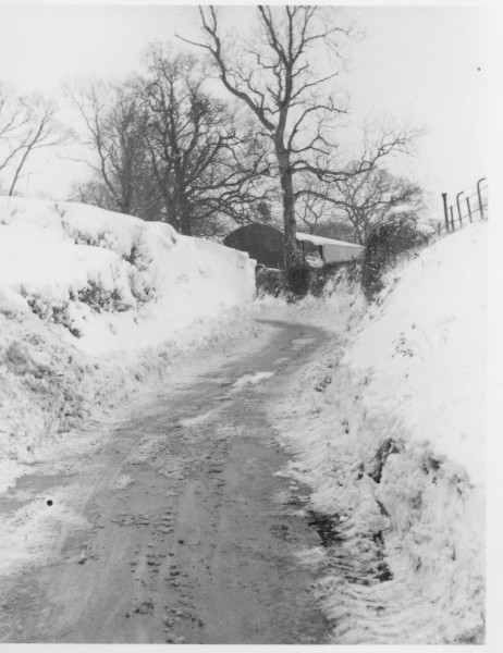 1963_snowfall (13)