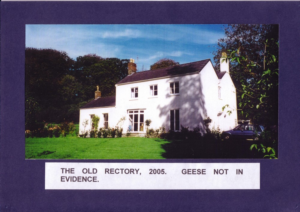 013 The old Rectory2005, Geese not in evidence