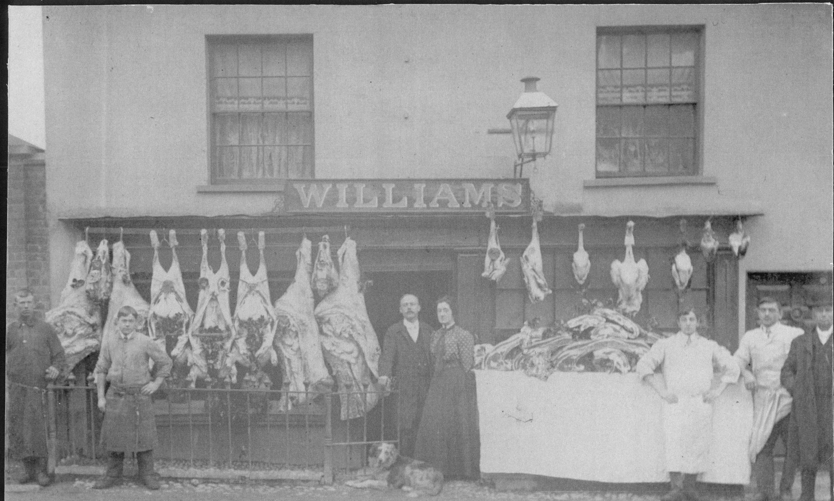 Uffculme. Williams' butchers' shop with carcasses & poultry on display outside.-1
