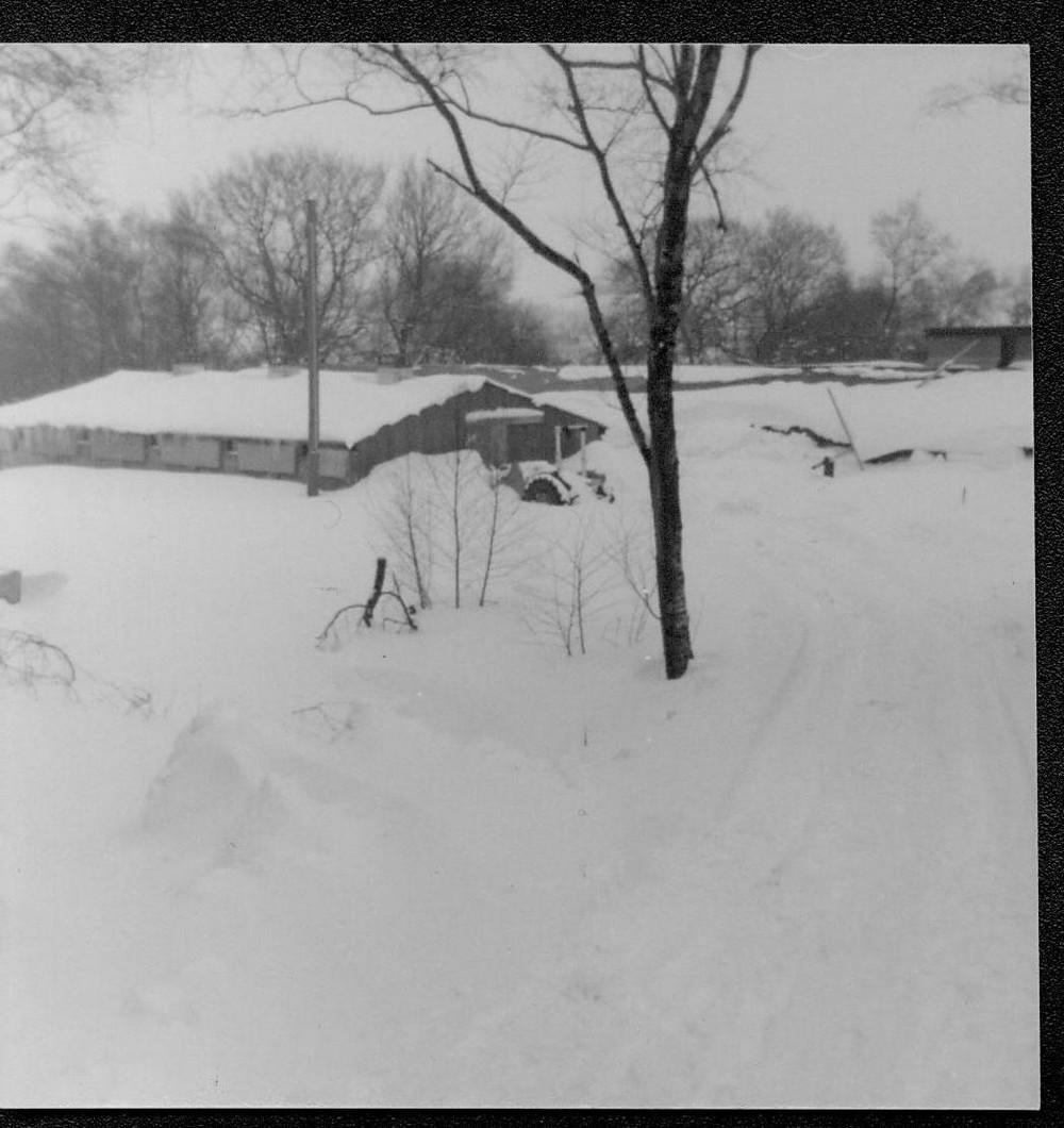 snow dunkeswell 3-1