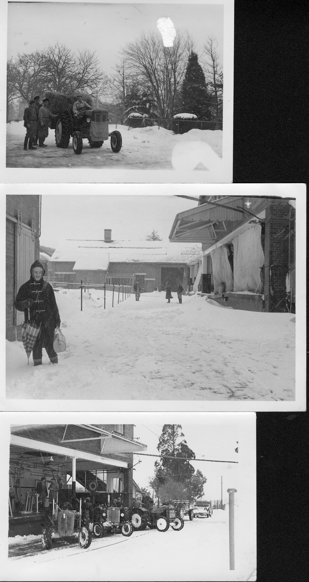 More snow scenees, Hemyock milk factory, 1962. Miss Freda Lee , now Bradford, features here after walking in from Ashculm.-1
