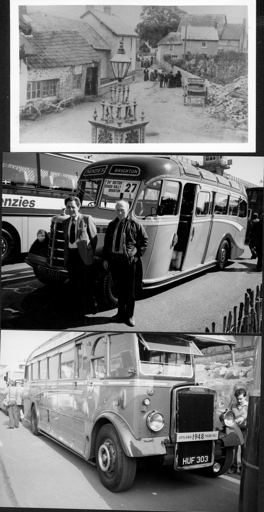 redwood buses-1