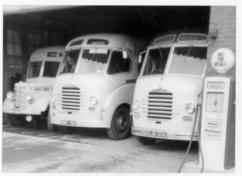 redwoods buses 1960-1a