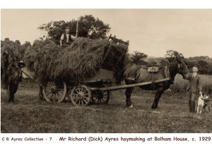 OPAYRES 7 HAYMAKING1929 A5